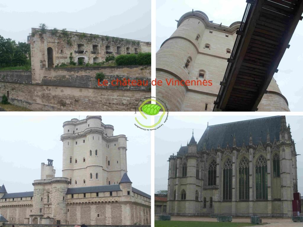 Les ruines d'une ancienne enceinte / Le donjon est la passerelle d'accès / Le donjon et son enceinte fortifiée / La Sainte-Chapelle