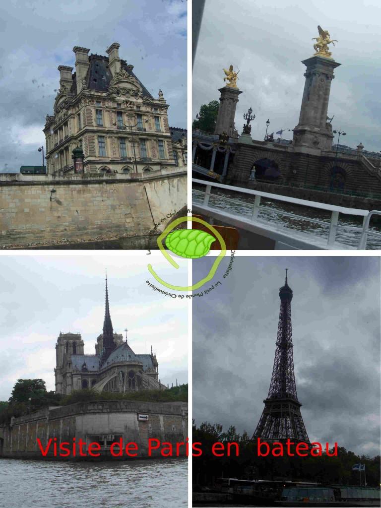 Une aile du Louvre / Le pont royal / Notre Dame / La tour Eiffel