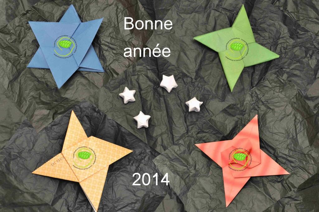 Origami d'étoiles pour fêter la nouvelle année ! Etoile à 6 branches, étoile Ninja, étoile à 4 branches, étoiles à 5 branches et étoile en spirale.