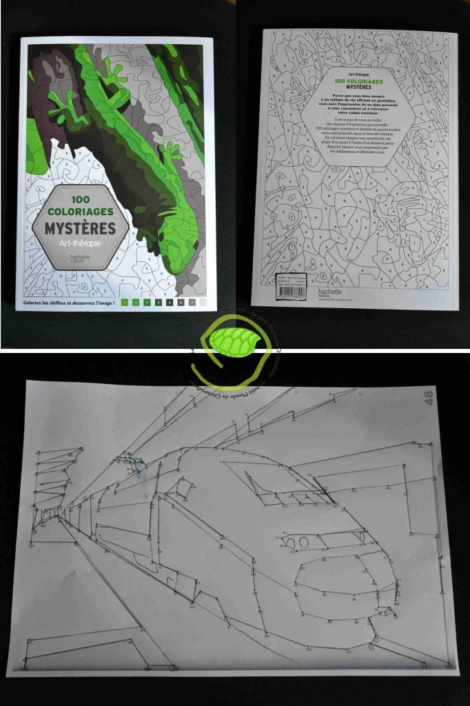 100 coloriages mystères Art-thérapie aux éditions Hachette loisirs, paru en avril 2014.