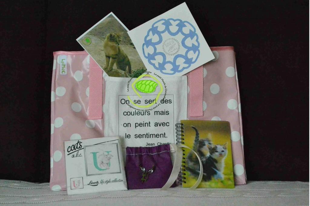 Un double sac cabas rose, un carnet avec des chats, un collier avec un chat, une borderie avec un chat, une photo d'un chat du désert et une petite carte kirigami !