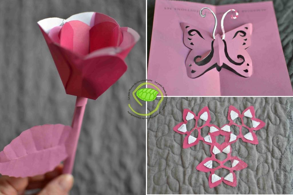 Une tulipe, un papillon et quelques fleurs ... vêtus de rose !