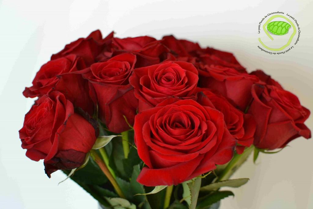 des roses pour l'odeur