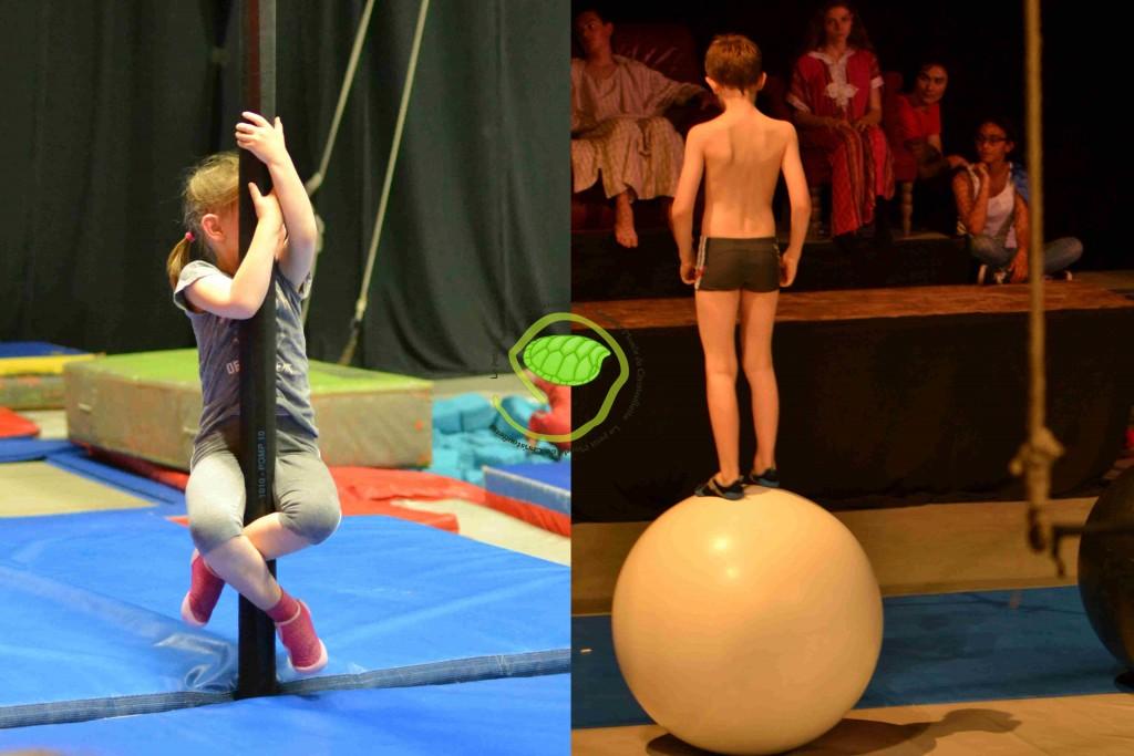 mes loulous font leur cirque