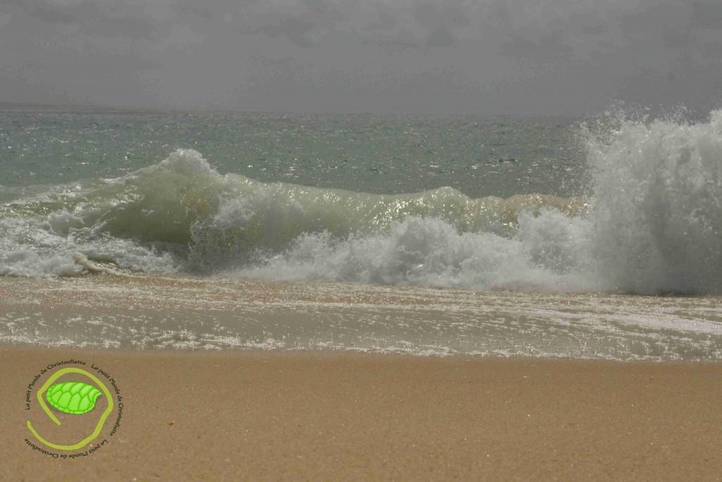 les vagues du Cap Ferret